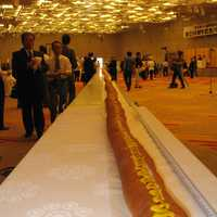 World's Longest Hotdog