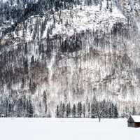 Winter with snow and trees with cabin in Graswang, Germany