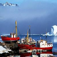 Ships at the Port in Greenland