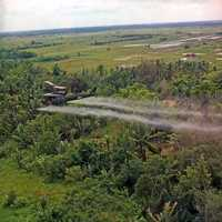 U.S. helicopter spraying chemical defoliants in the Mekong Delta during the Vietnam War