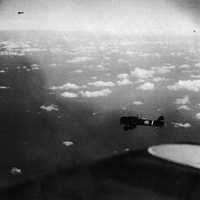 Japanese carrier dive bombers during the Battle of Coral Sea, World War II