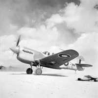 Kittyhawk Mark III during the 2nd battle of El Alamein, World War II