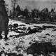 Malmedy massacre during the Battle of the Bulge, World War II