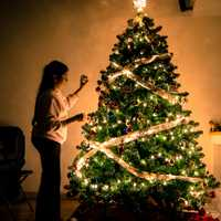 Woman decorating Ornamented Christmas Tree