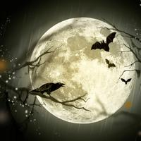Spooky Halloween Illustration of Bats and Crow under the full moon