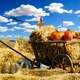 Thanks photo with cart with hay, pumpkin, chicken, and eagle