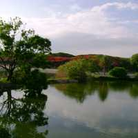 Lakeview of Lalbagh Park in Bangalore, India