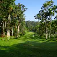 Golf Course with tropical trees in India