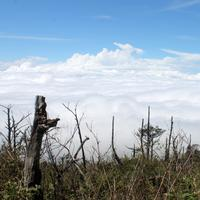 Landscape and a Sea of Clouds in Indonesia