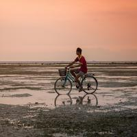 Man on Bicycle in Indonesia