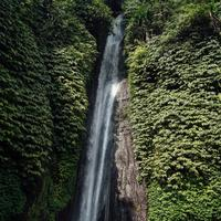 Waterfalls in Nature in Indonesia