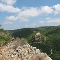 Hills and Trees in Israel