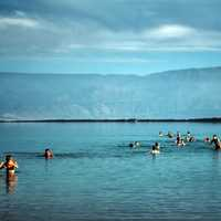 People Bathing in the Dead Sea, Israel