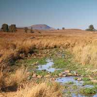 Plains and streams landscapes on Golan Heights in Israel