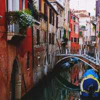 The Busy Waterways of Venice