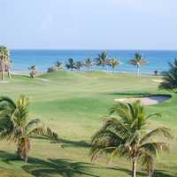 Landscape of a golf course in Jamaica