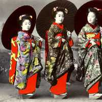Group of Geishas
