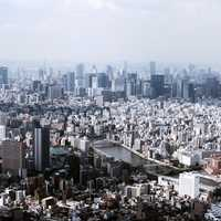 Expansive Tokyo metropolis with buildings, towers, and cityscape, in Japan