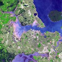Satellite view of the Auckland isthmus and Waitemata Harbour, New Zealand