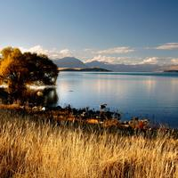 Evening Landscape around Lake Tekapo in New Zealand