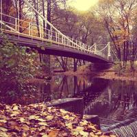 Autumn with bridge over a creek in Norway