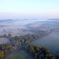 Aerial View of forests under fog