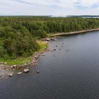 Aerial View of lake shoreline with forest