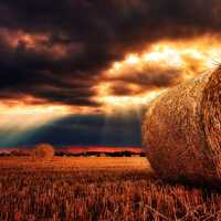 Bales of Hay under the skies