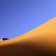 Dune of sand in the desert