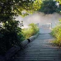 Fog on the wooden bridge walkway