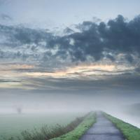 Foggy Path landscape