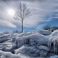 Jack Darling Park, Mississauga winter ice landscape