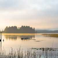 Lake and Marsh Landscape in the Morning