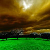 Light Effect with clouds over grass and trees