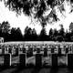 Memorial Cemetary in black and white