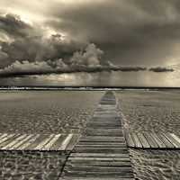 Monochrome sand beach landscape with boardwalk