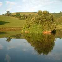 Pond and Serene Landscape with reflections