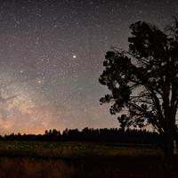 Stars and the Milky way over the night landscape with cabin and tree