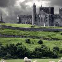 Stormy castle ruins and field with sheep