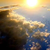 Sun and sky with birds and clouds