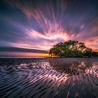 Time-Lapse landscape at dusk with water, sand, and tree