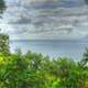 Tropical Ocean with plants and trees under heavy clouds