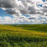 Windswept landscape with clouds and windmill farm