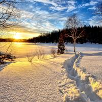 Winter Morning sunrise landscape