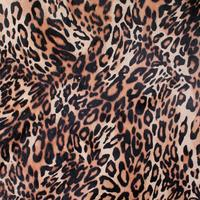 Leopard Skin Background Pattern