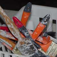 Brushes covered with paint