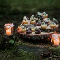 Cupcakes and candles in the woods