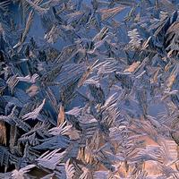 Frost crystals and shapes