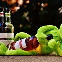 Kermit with a bottle of wine