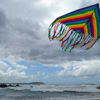 Large Kite Flying in the Air